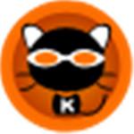 kk录像机电脑版