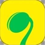 萌芽直播app