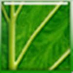 sharpenerpro(PS锐化滤镜)官方版
