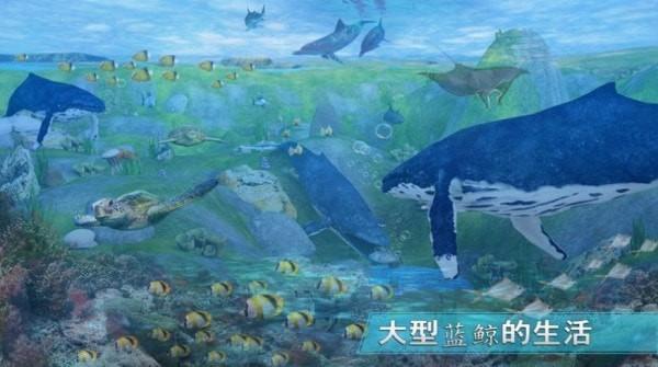 全民养鲸鱼无限金币版