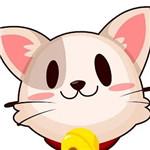 猫印直播app