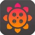 贝壳视频app手机版