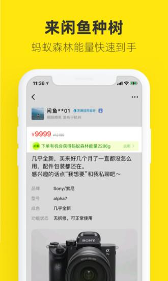 闲鱼官方下载破解版